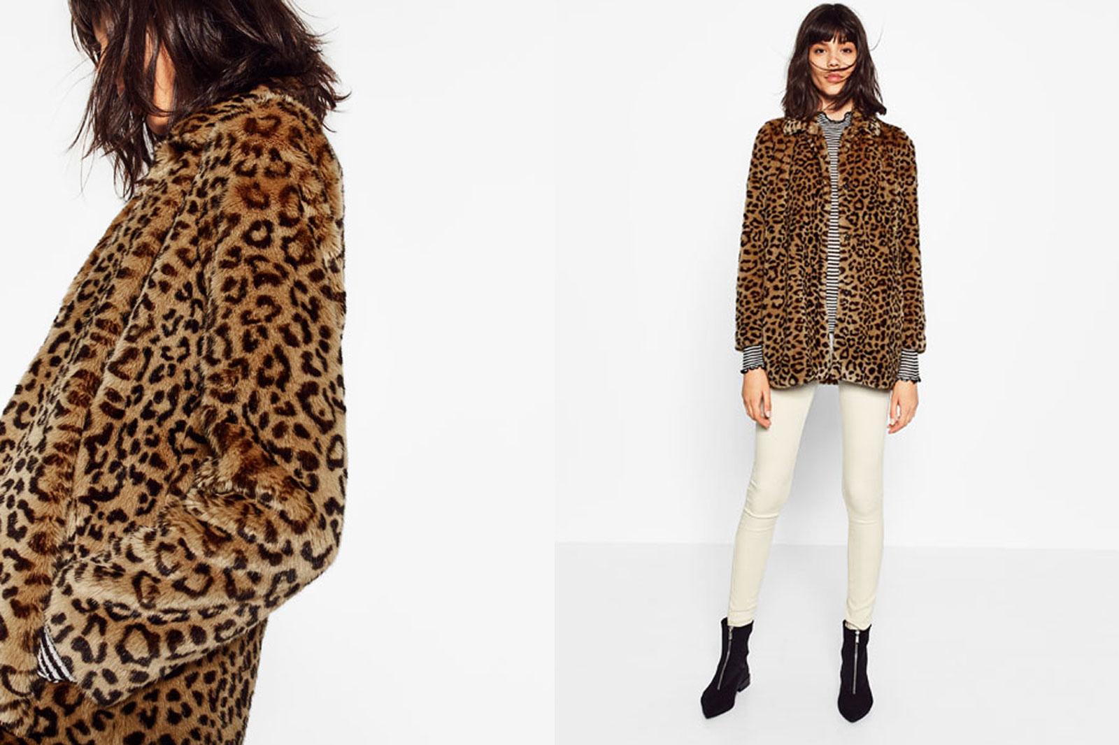 leopardo_tendencia